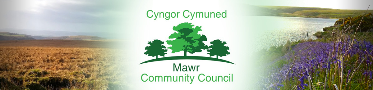 Header Image for Mawr Community Council